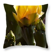 Bloom And Buds Throw Pillow