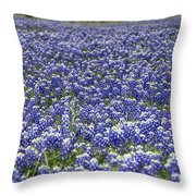 Blue Bonnet Carpet V7 Throw Pillow