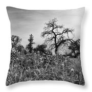 Blue Bonnets-black And White Throw Pillow