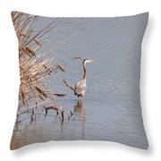 Blue Heron In The Wild Throw Pillow