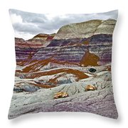 Blue Mesa Trail In Petrified Forest National Park-arizona Throw Pillow