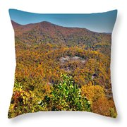 Blue Ridge Parkway Throw Pillow