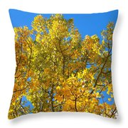 Blue Skies And Golden Aspen Trees Throw Pillow