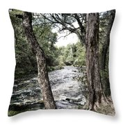 Blue Spring Branch Throw Pillow