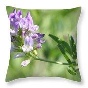 Blue Wild Flower Throw Pillow
