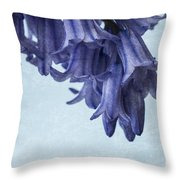 Bluebells 3 Throw Pillow