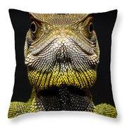 Bocourts Dwarf Iguana Choco Rainforest Throw Pillow