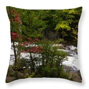 Bog River Throw Pillow
