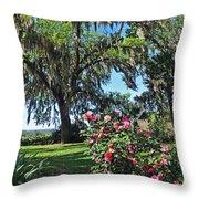 Bok Tower Gardens Throw Pillow