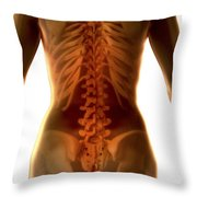 Bones Of The Upper Body Female Throw Pillow