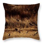 Bosque Del Apache New Mexico-sand Cranes V2 Throw Pillow