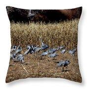 Bosque Del Apache New Mexico-sand Cranes V3 Throw Pillow