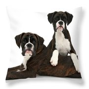 Boxer Pups Throw Pillow by Mark Taylor