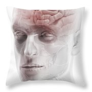Brain And Nerves Of The Head Throw Pillow