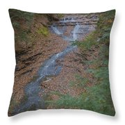 Bridal Vail Falls - Cvnp Throw Pillow