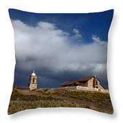 Braving The Elements Throw Pillow