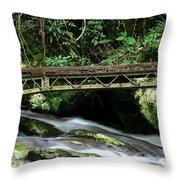 Bridge Over Mountain Stream Throw Pillow