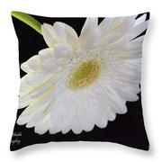 Bright White Gerber Daisy # 2 Throw Pillow
