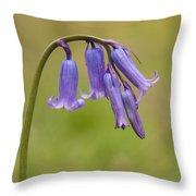 British Bluebell Hyacinthoides Non Scripta Throw Pillow