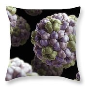 Brome Mosaic Virus Throw Pillow