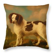 Brown And White Norfolk Or Water Spaniel Throw Pillow