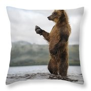 Brown Bear In River Kamchatka Russia Throw Pillow