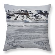 Brown Bluff, Antarctica Throw Pillow