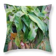 Bug Catcher Throw Pillow