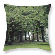 Buile Hill Park Throw Pillow