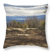 Burnt Blueberry Field In Maine Throw Pillow