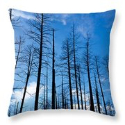 Burnt Pine Trees In A Forest, Grand Throw Pillow