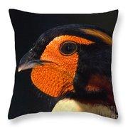 Cabots Tragopan Pheasant Throw Pillow