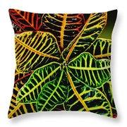 Cadiaeum Crotons Tropical Houseplant Shrub Throw Pillow