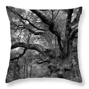 California Black Oak Tree Throw Pillow