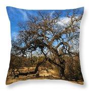 California White Oak Throw Pillow