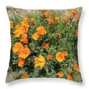 Californian Poppy Eschscholzia Throw Pillow