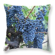 Calistoga Bloom Throw Pillow