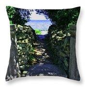 Cana Island Walkway Wi Throw Pillow