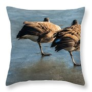 Canada Geese At Rest Throw Pillow