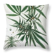 Cannabis  Throw Pillow