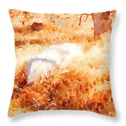 Canoe Throw Pillow