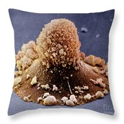 Carcinoma Cell Apoptosis Throw Pillow