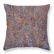 Cardinals Galore Throw Pillow