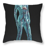Cardiovascular System Female Throw Pillow