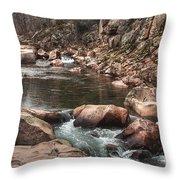 Castor River Throw Pillow