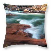 Castor River Throw Pillow