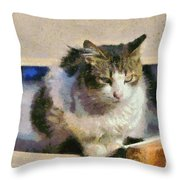Cat On Chair Throw Pillow