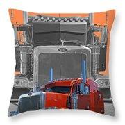 Catr3079a-13 Throw Pillow