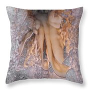 Cave Formations 13 Throw Pillow
