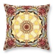 Cecropia Sun 4 Throw Pillow